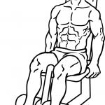 seated-leg-curl-1